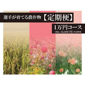 【予約販売】2021選手が作る農作物【定期便1万円】