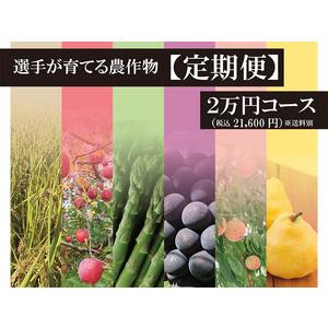 【予約販売】2021選手が作る農作物【定期便2万円】