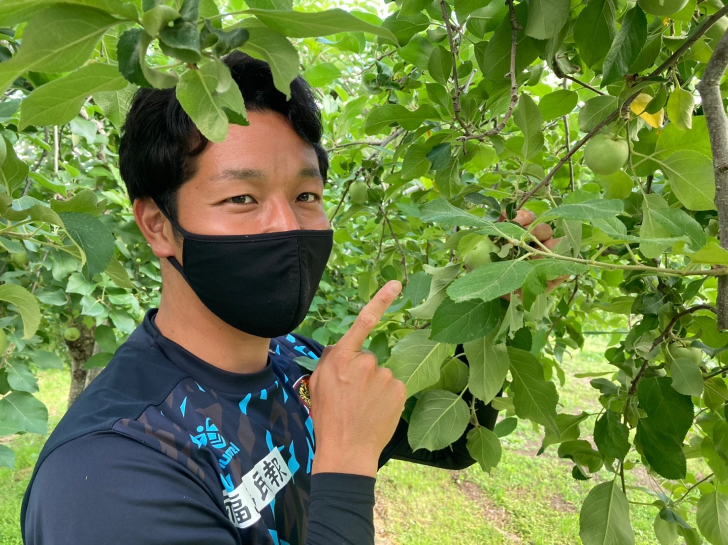 【活動報告】りんごの摘果を行いました!