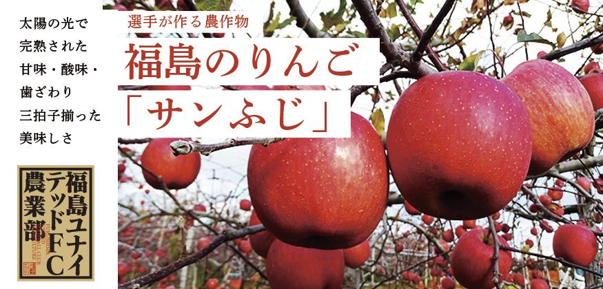 TOP_りんご