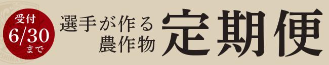 バナー_定期便